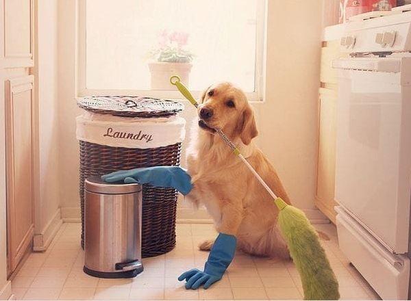 8 лайфхаков по уборке в труднодоступных местах