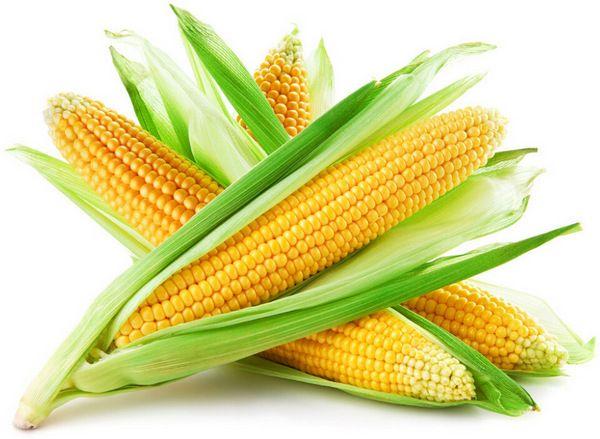 Как правильно выбрать и сварить кукурузу